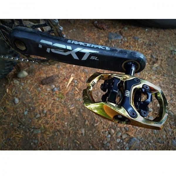 Gold iSSi Trail pedals
